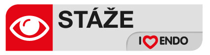 staze_icon